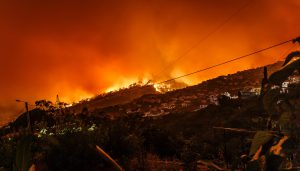 Incendios en Galicia ¿cómo se originan?