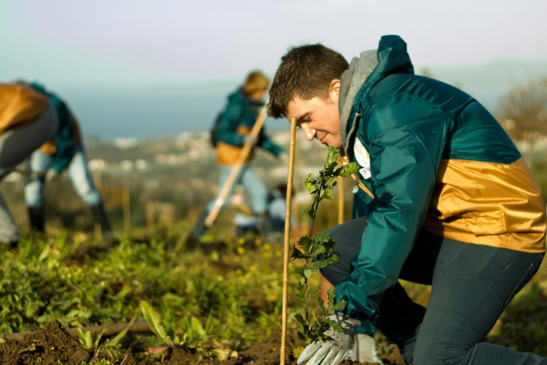Voluntario plantando un roble en el Parque DF-SERVER en Matamá
