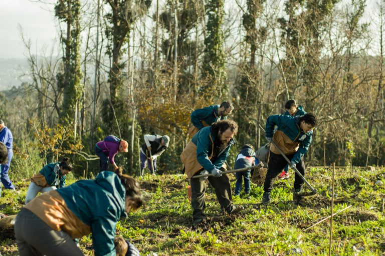 Voluntarios plantando especies autóctonas de Galicia en el parque DF-SERVER