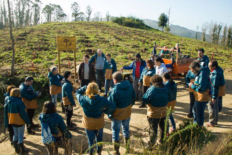 Grupo de voluntarios del proyecto Planta Vida preparados para plantar árboles